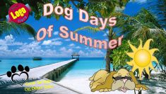 dog-days-of-summer-10-5x6_page_1